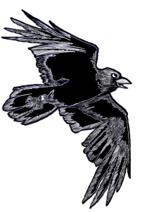Raven_flight_cartoon