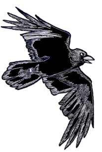 Wright the Raven