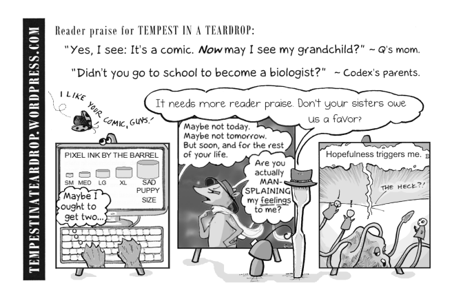 Tempest in a Teardrop promotional flyer uses copious reader praise