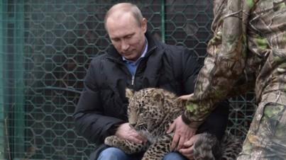 PutinAndTiger