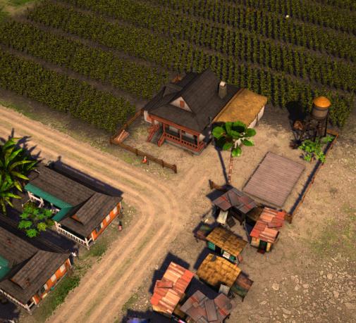CornPlantation